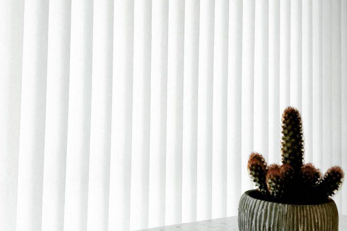 glasgordijnen in keuken met cactus